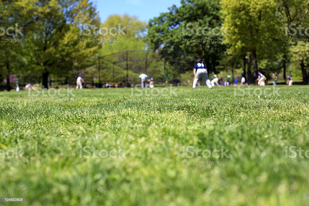 Baseball players in the park royalty-free stock photo