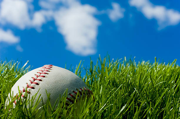 baseball set on tall, green grass on a clear day - spring training stock photos and pictures