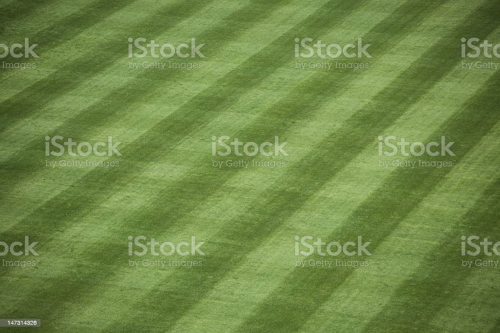 Baseball Stadium Grass stock photo