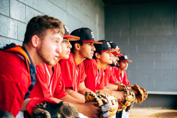 Baseball team members sitting in dugout focused on game stock photo