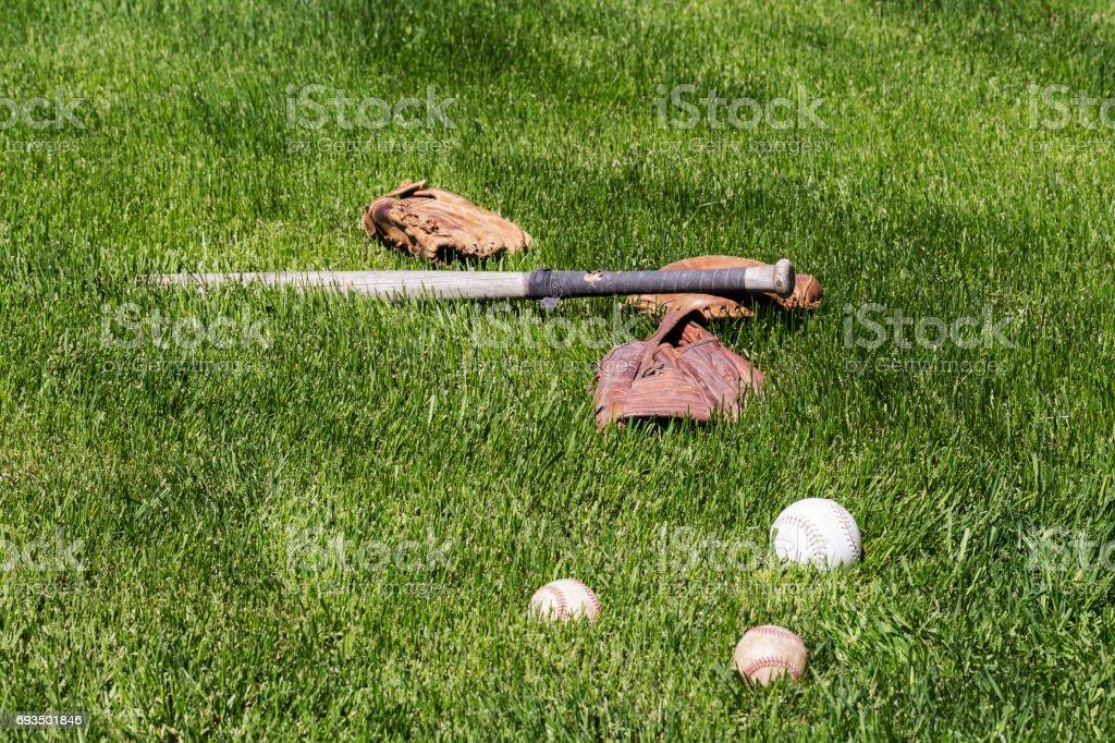 Vintage softball bat, baseball gloves, baseballs and a softball in...