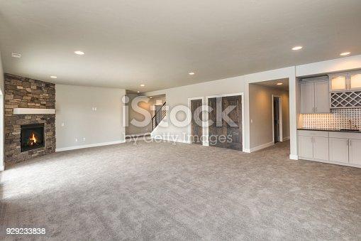 Huge open basement bonus room