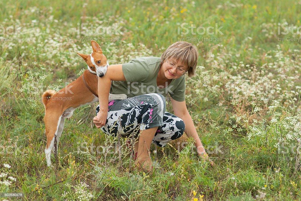 Basenji dog bites master while playing outdoors stock photo