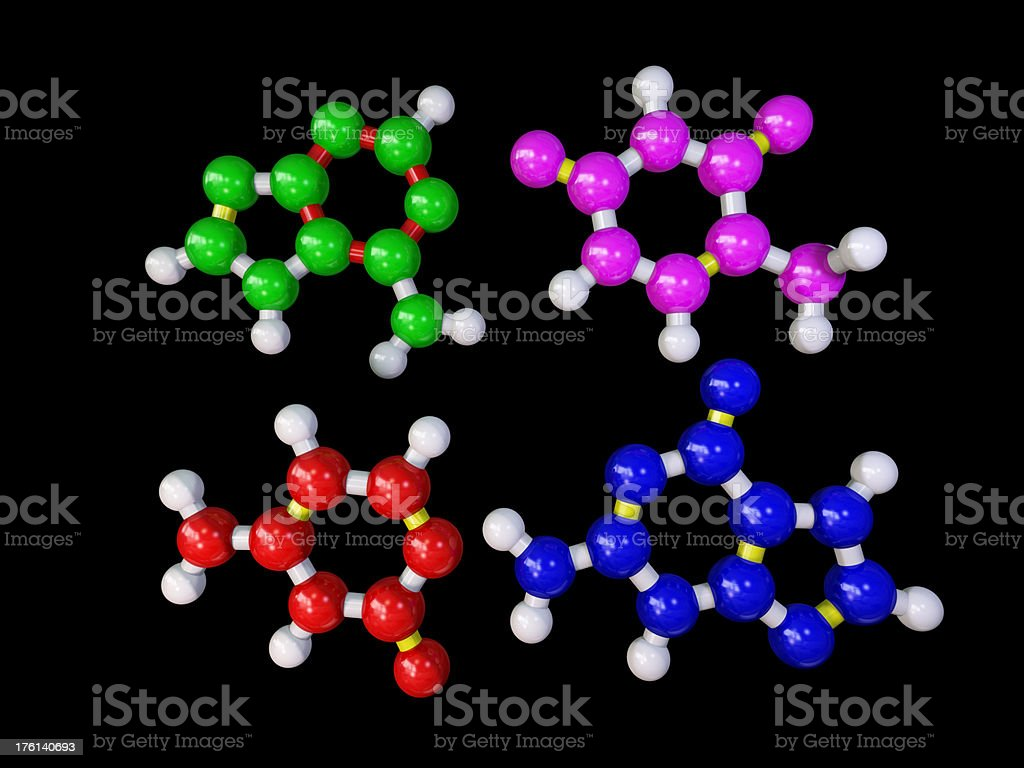 DNA Bases stock photo