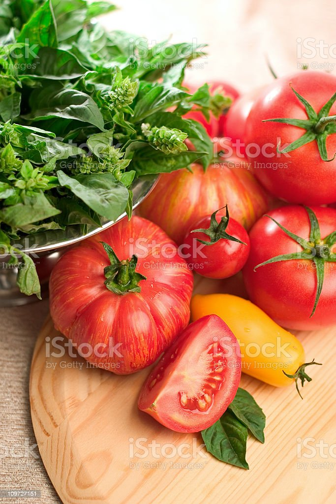 Basil and Tomatoes royalty-free stock photo