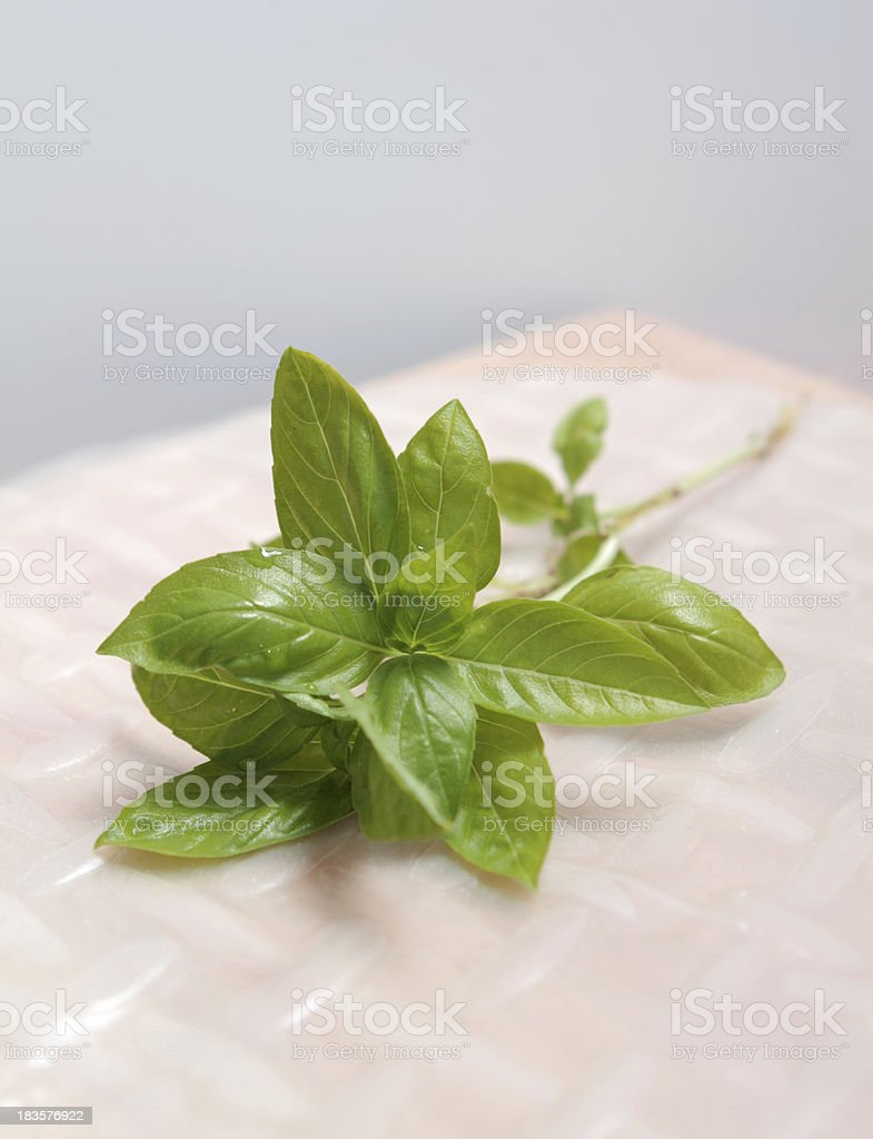 fresh bunch of basil leaves on a wooden cutting board with a plain...