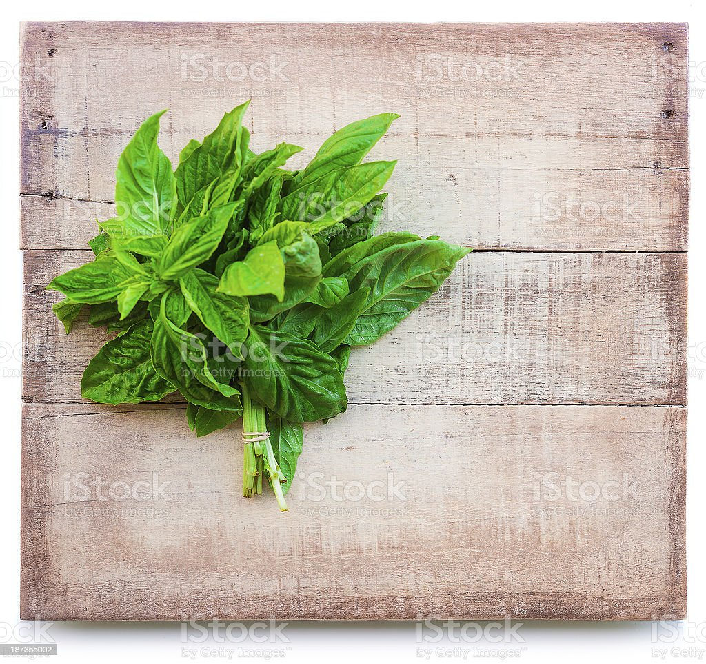basil bunch on a plank wooden board isolated on white and copy space