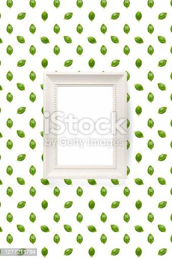 Basil. Green leaves of fresh italian basil background on whte backdrop. Basil leaves isolated on white background. Modern background. not pattern