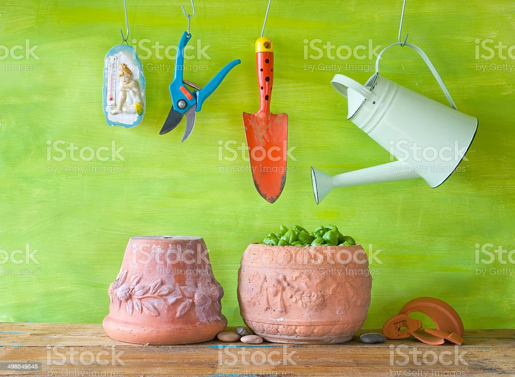Basil in a flower pot, gardening tools, free copy space stock photo