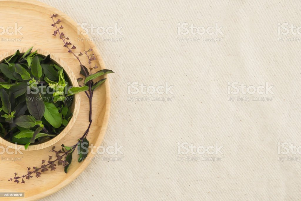 Basil leaves and flowers in wooden bowl stock photo