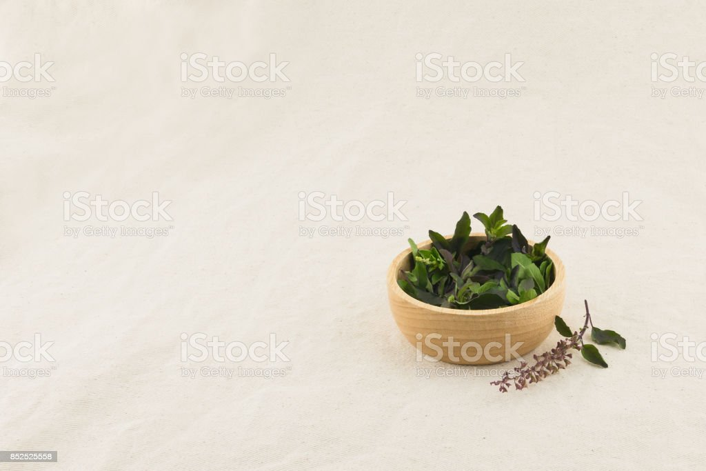 Basil leaves and flowers in wooden bowl with copy space stock photo
