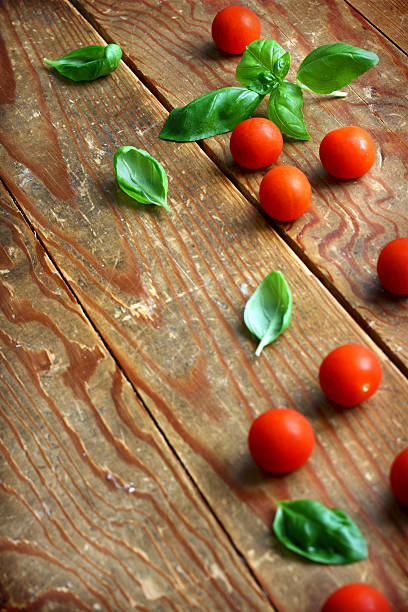 Basil leaves and tomatoes stock photo