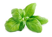 istock Basil leaves isolated 871684266