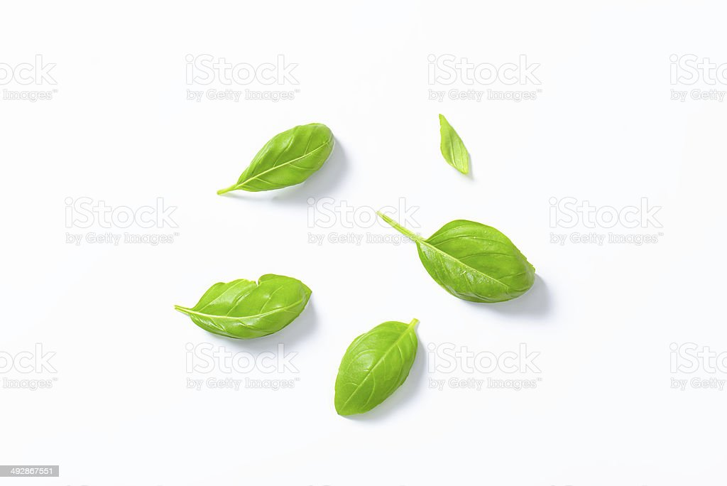 basil leaves​​​ foto
