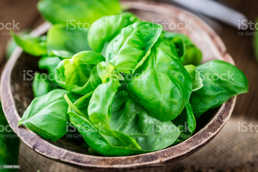Basil Leaves (selective focus; close-up shot) stock photo