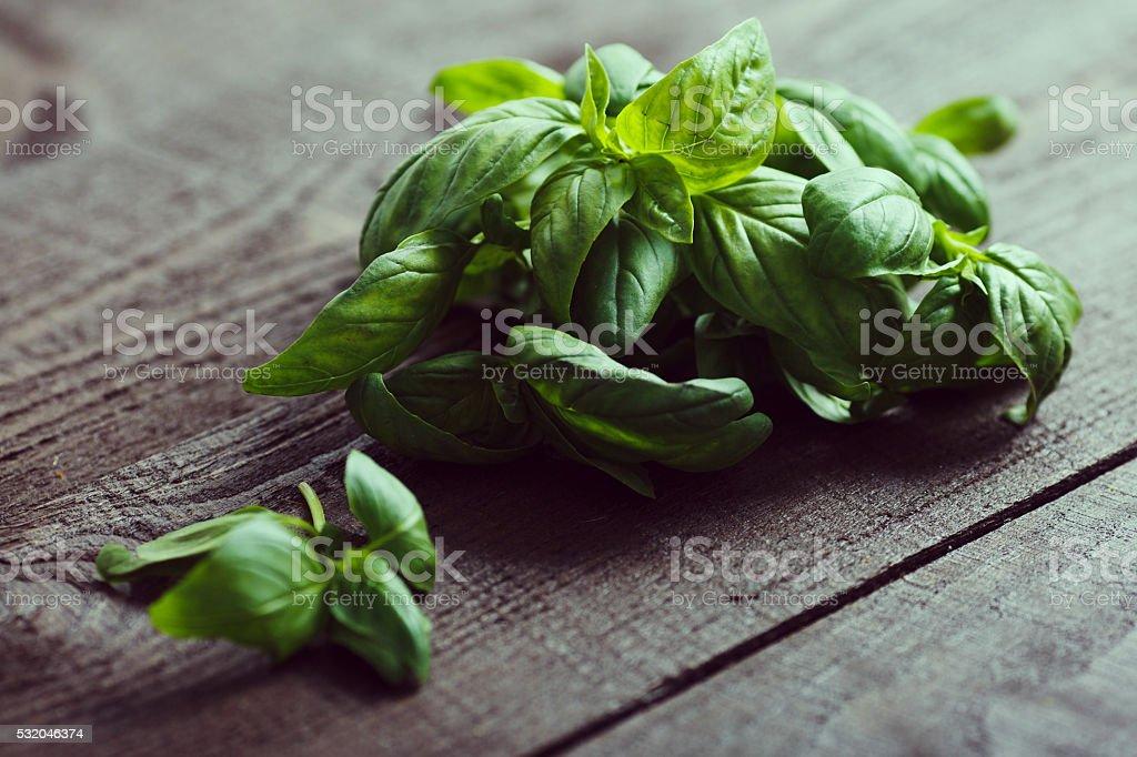 Basil on a dark wood background stock photo