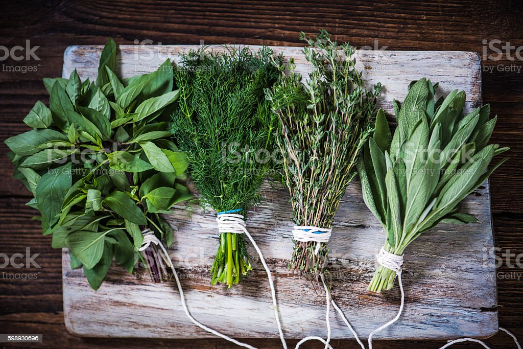 Basil,sage,dill,and thyme herbs stock photo