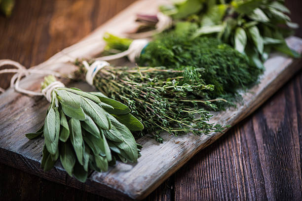 basil,sage,dill,and thyme herbs - organic stock pictures, royalty-free photos & images