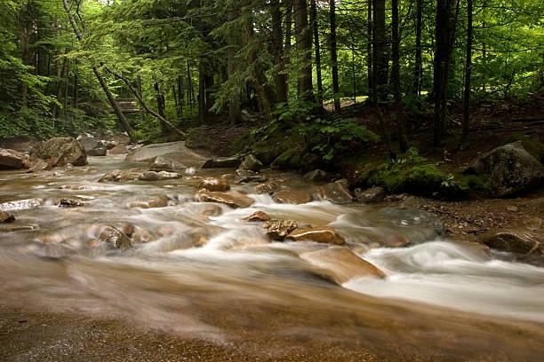 Basin Stream at Franconia Notch stock photo