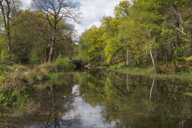 Basingstoke Canal in Springtime stock photo