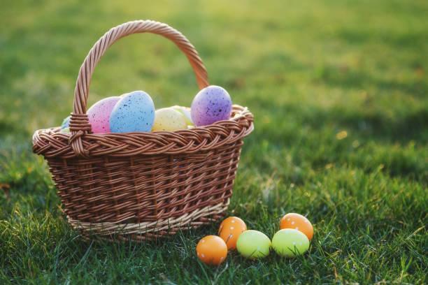 Basket full of easter eggs on green lawn stock photo