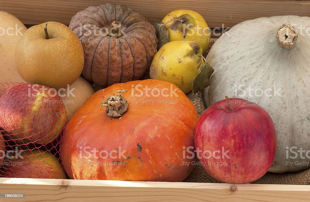 Basket Full of Fall Produce royalty-free stock photo