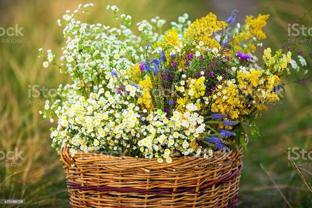 Un panier plein de fleurs sauvages Field - Photo