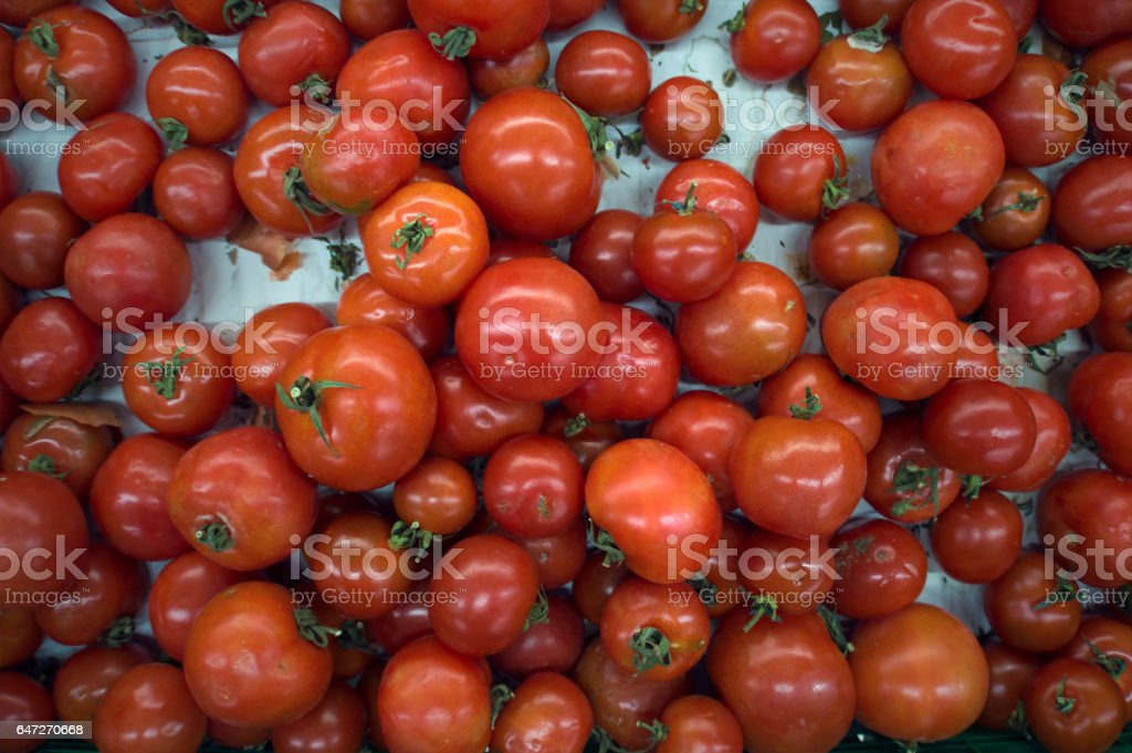 basket full of red ripe tomatoes stock photo