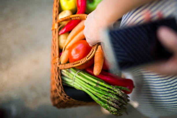 Basket full of vegetables and fruits on open market stock photo