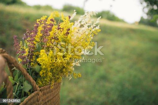 Basket full of wild flowers in woman hands