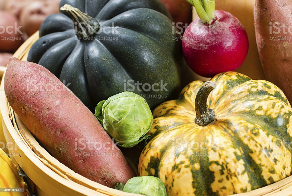 Basket of acorn squash, radishes, sweet potatoes and brussells sprout. royalty-free stock photo