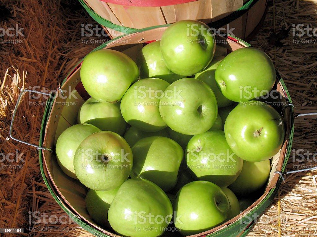 Cesta de manzana foto de stock libre de derechos