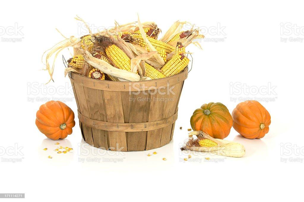 Basket of Corn with Squash on White stock photo