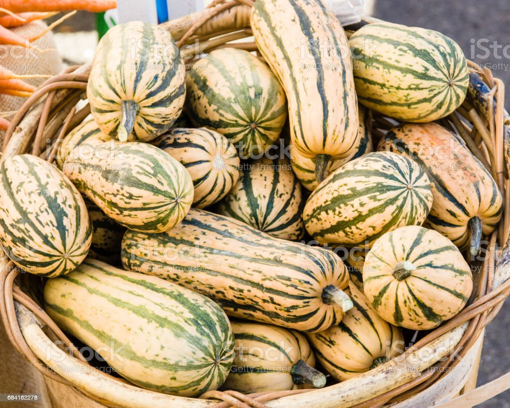 Basket of delicata squash at the market royalty-free stock photo
