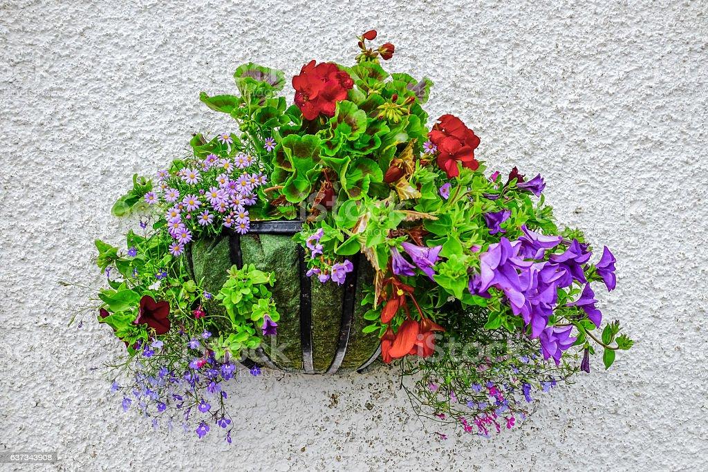 Korb mit Blumen – Foto