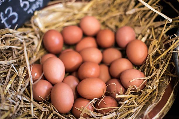 Basket of Fresh Farm Eggs. stock photo