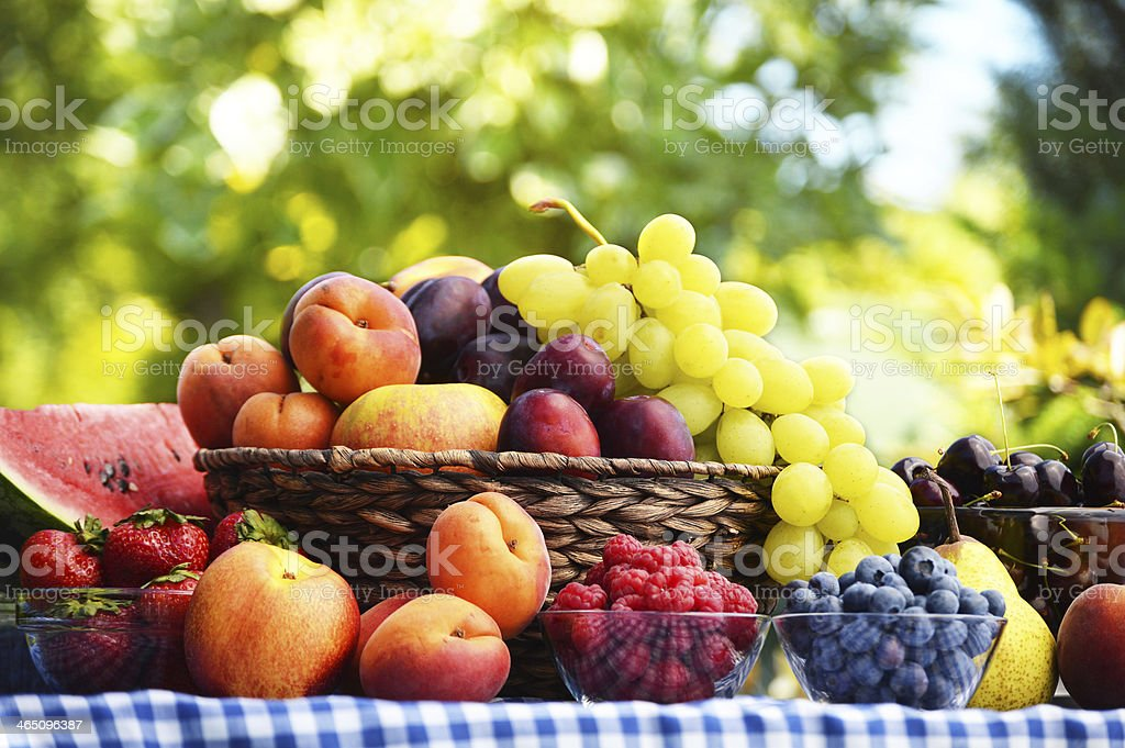 Basket of fresh organic fruits in the garden stock photo