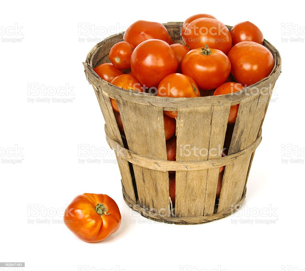 Basket Of Fresh Picked Garden Tomatos stock photo