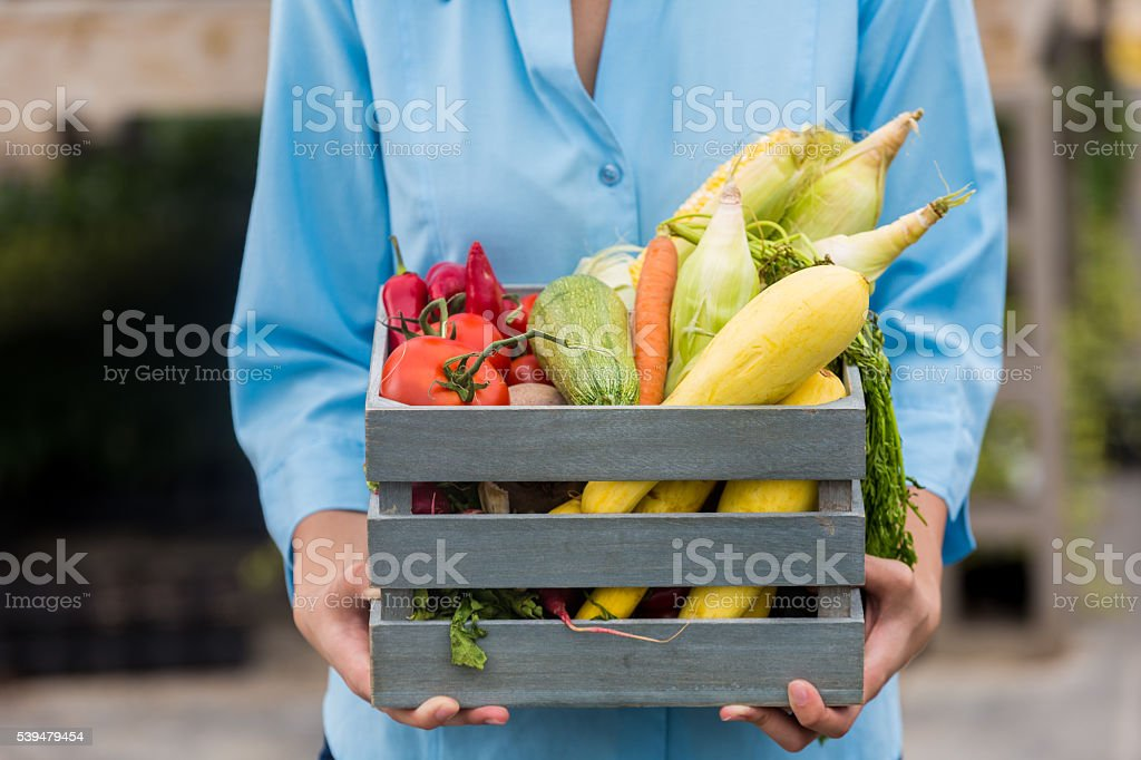 Basket of fresh summer vegetables outside stock photo