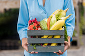 Woman holding a basket of fresh vegetables. Corn, tomatoes, carrots, squash, and chili peppers are all inside of the basket. She is standing outside. The focus is on her hands and the basket. Her face is out of frame.