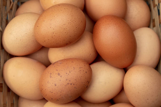 A Basket of Hens Eggs from Above stock photo