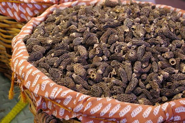 Basket of Mushrooms stock photo