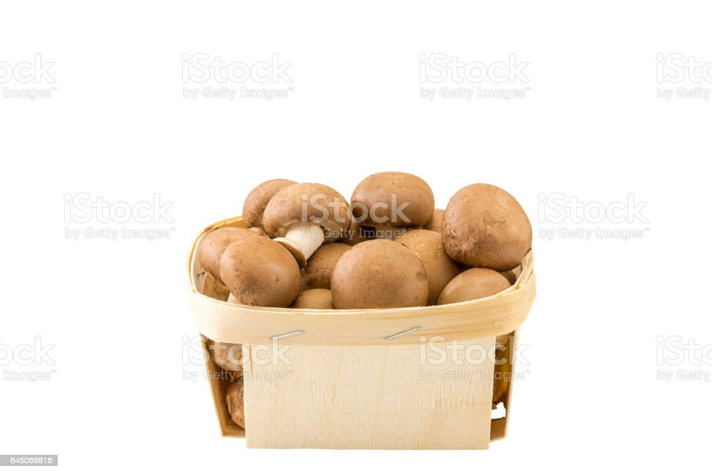 Einen Korb Champignons stock photo