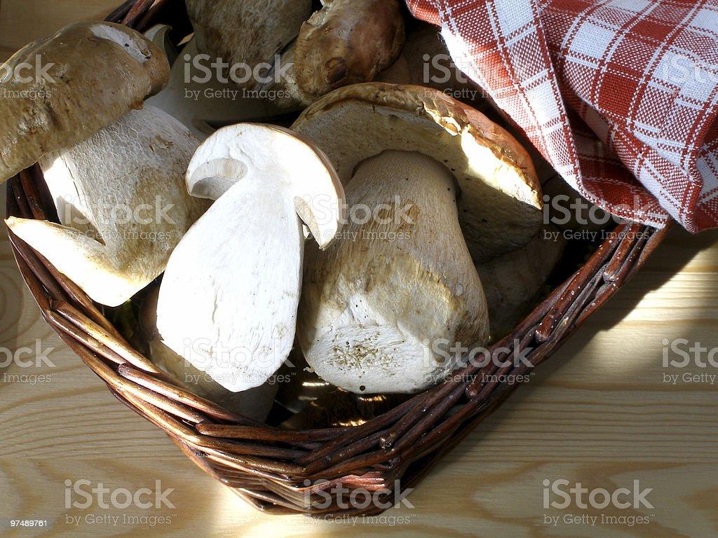 Basket of mushrooms royalty-free stock photo