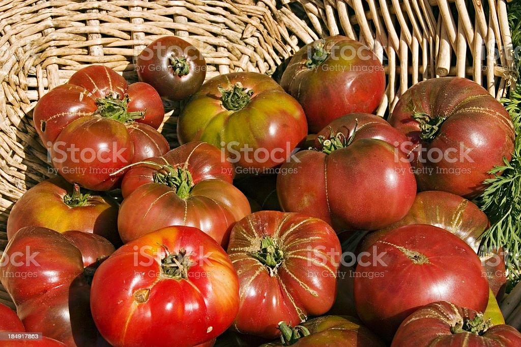 Basket of Organic Heirloom Tomatoes royalty-free stock photo