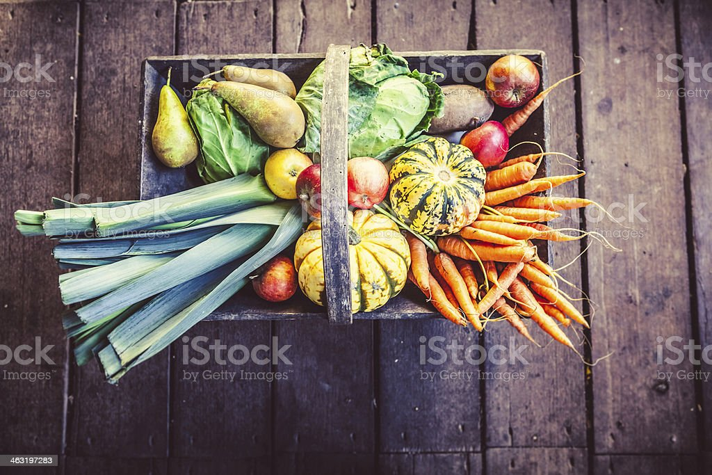 Basket of organic vegetables for a healthy autumn stock photo
