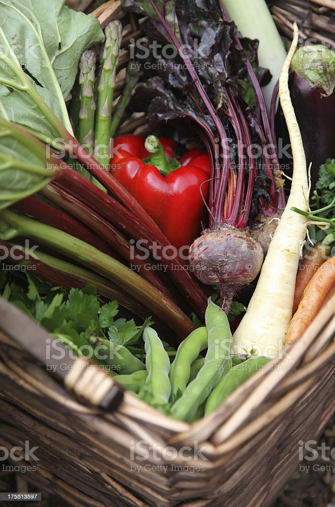 Basket of organic vegetables royalty-free stock photo