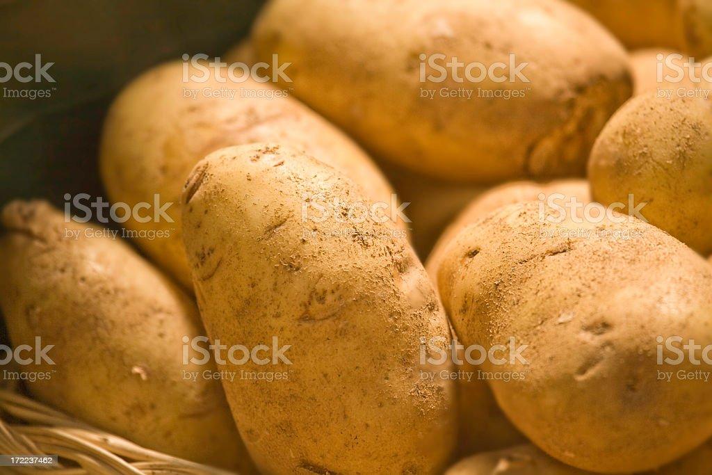 Basket of Potatoes royalty-free stock photo