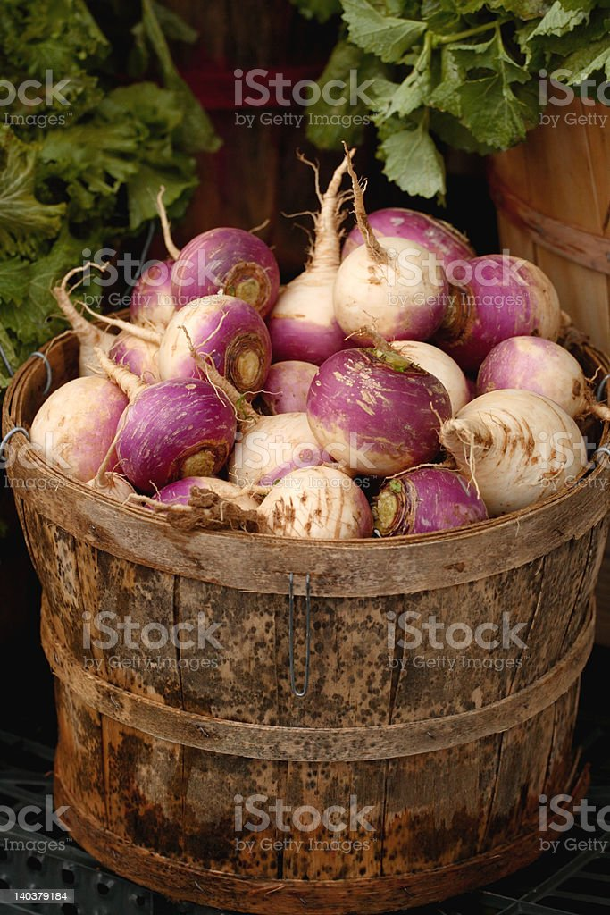 Basket of Turnips stock photo