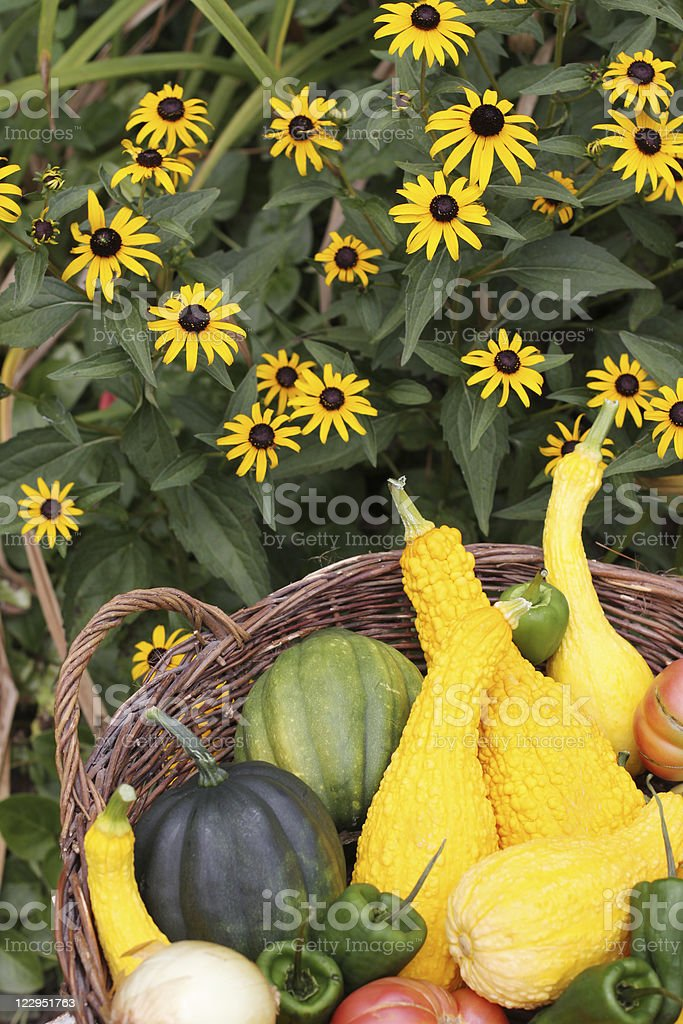 Basket of Vegetables with Flowers royalty-free stock photo
